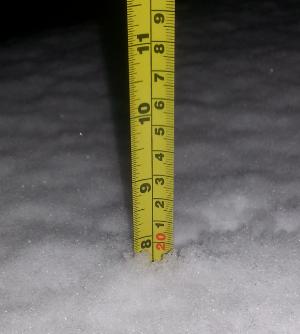 snowfall amount Ladner BC Canada